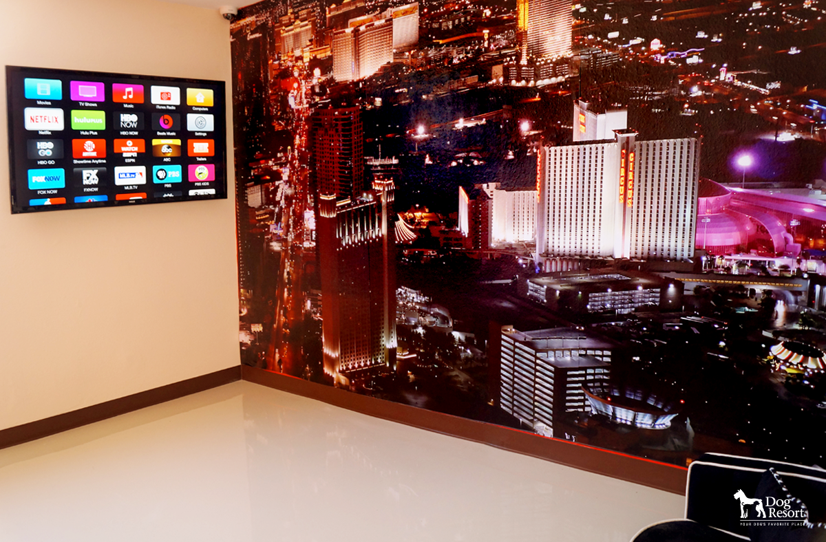 Welcome to Las Vegas Presidential Suite 1