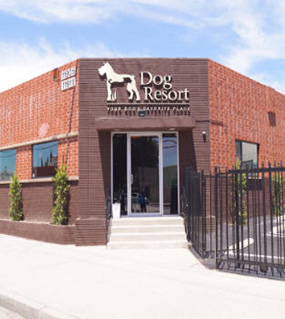 Dog Resort North Hollywood